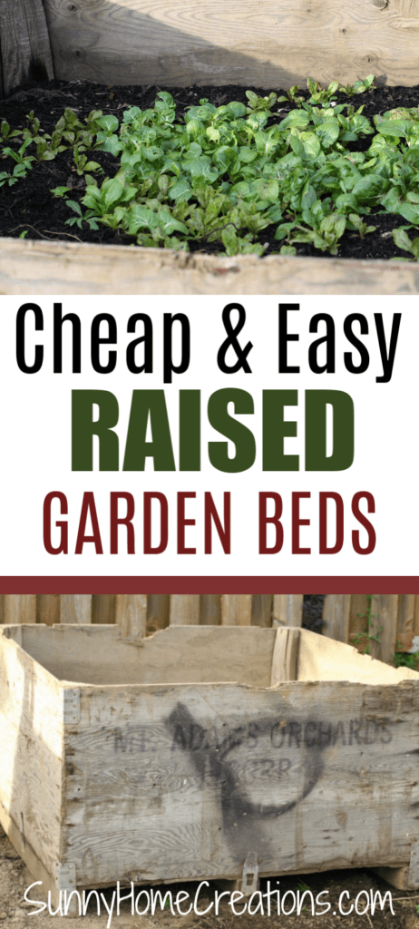 Cheap & easy raised garden beds