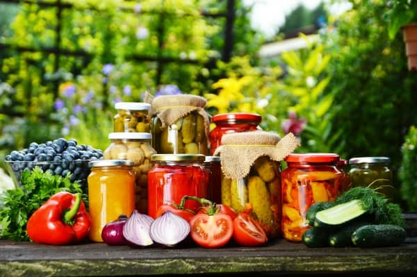 Best Plants for Canning