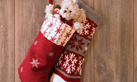 Best Stocking Stuffer Ideas for Your Family