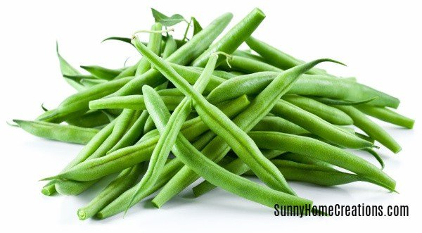 Green Beans are easy to grow