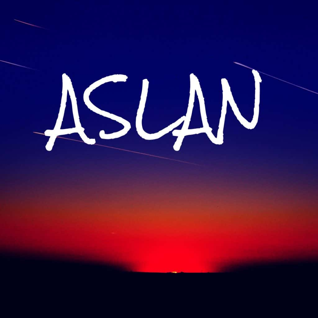 Aslan - Unique Baby Boy Name
