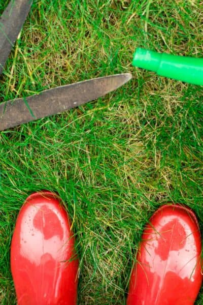 best gardening shoes