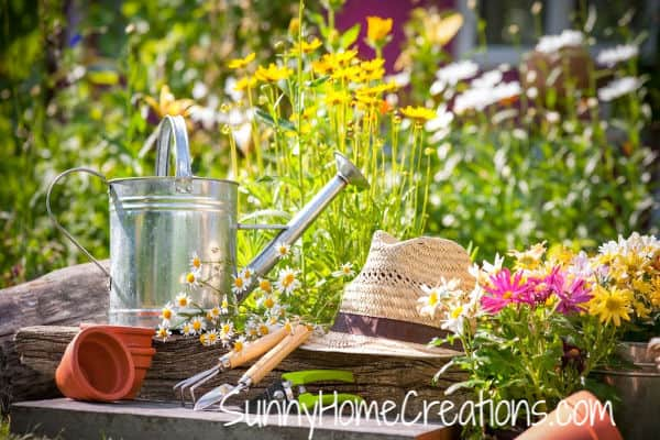 Must have list of gardening tools