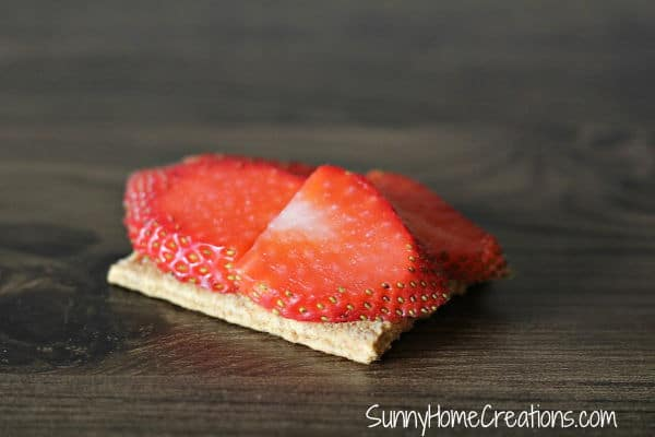 Thinly Sliced Strawberries Topping Graham Cracker