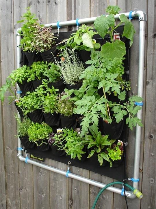 Hanging Vertical Garden