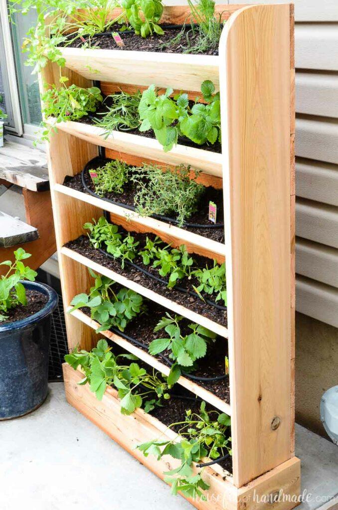 Vertical garden drip system