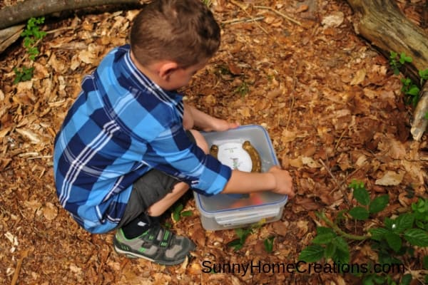 Kids spring geocaching activity