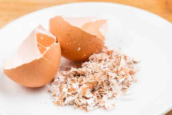 crushed eggshells great for tomato plants