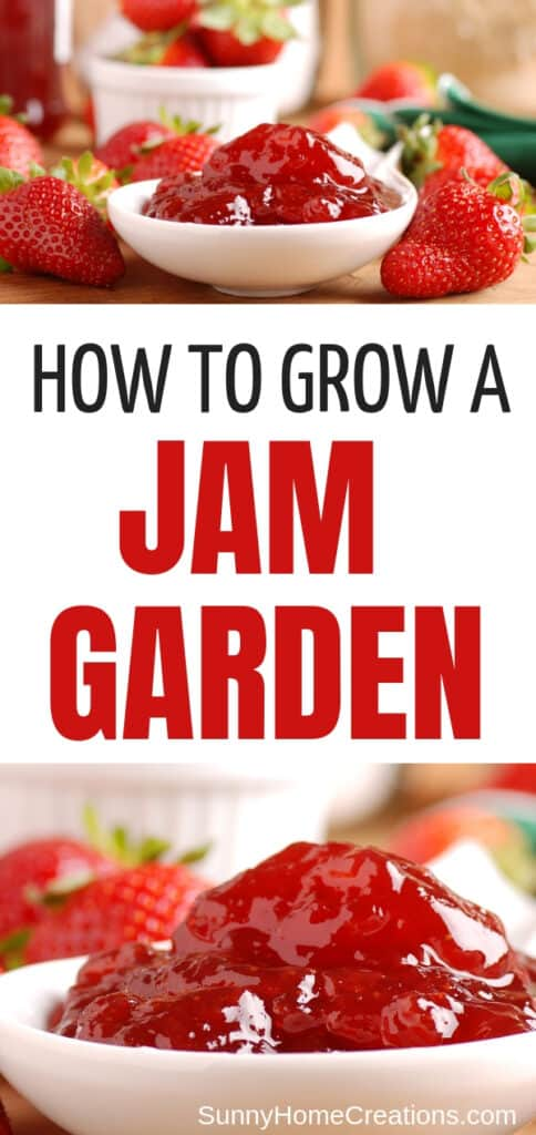 How to grow a jam and jelly garden