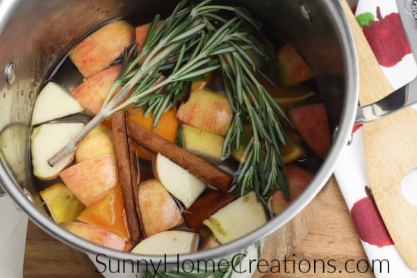 natural fall simmer pot
