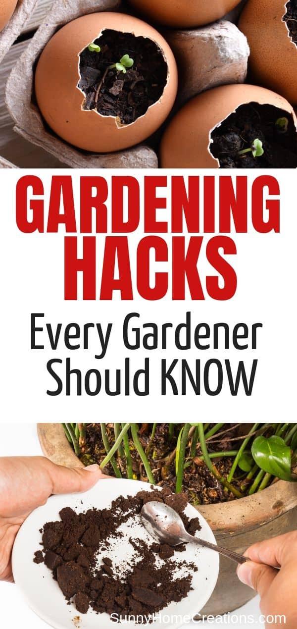 Gardening Hacks Every Gardener Should Know