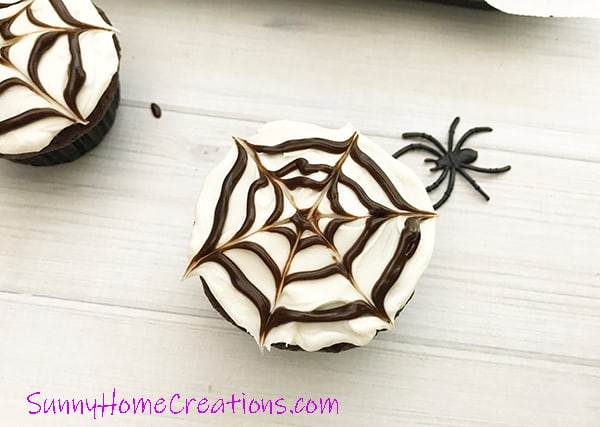 Spider web cupcakes with web